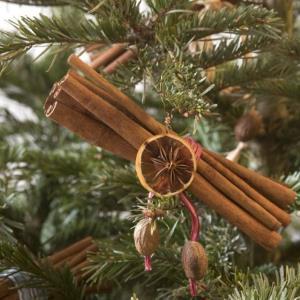 Kako s djecom samostalno izraditi ukrase za bor