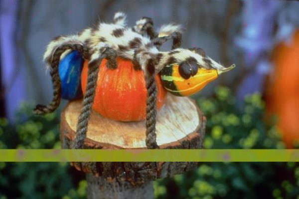 Dječje ideje za rezbarenje bundeva za Halloween - Noć Vještica